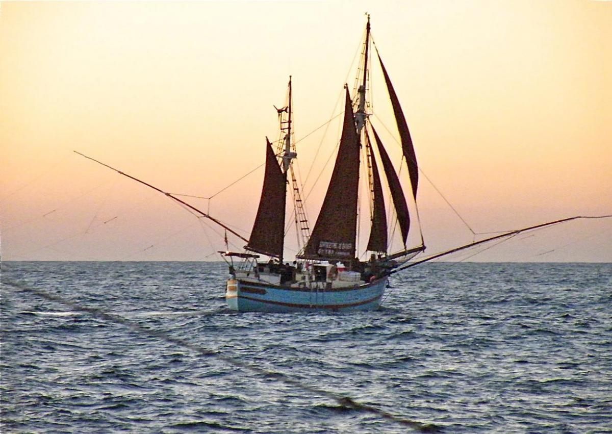 La Reine des Flots en mode pêche au thon