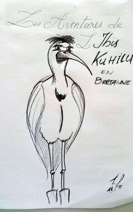 ibis-khuilu.jpg
