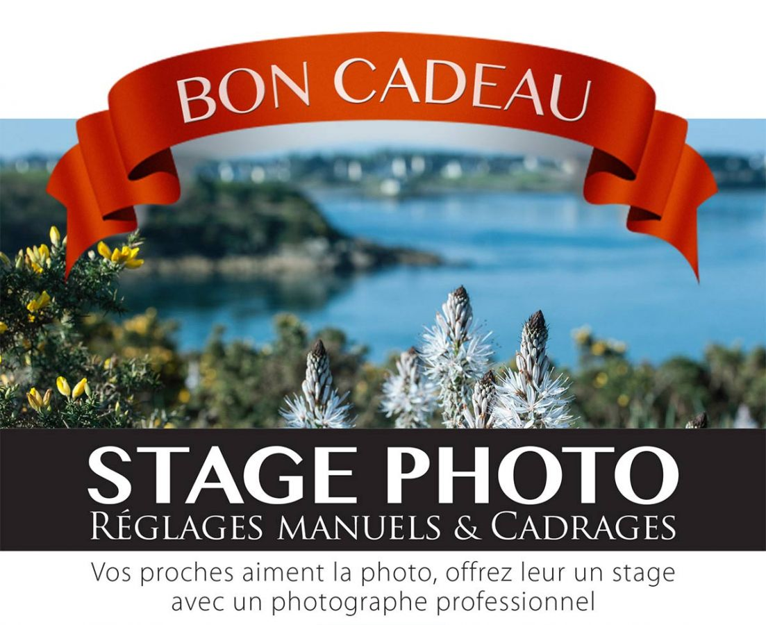 BonCadeauStagePhoto.jpg